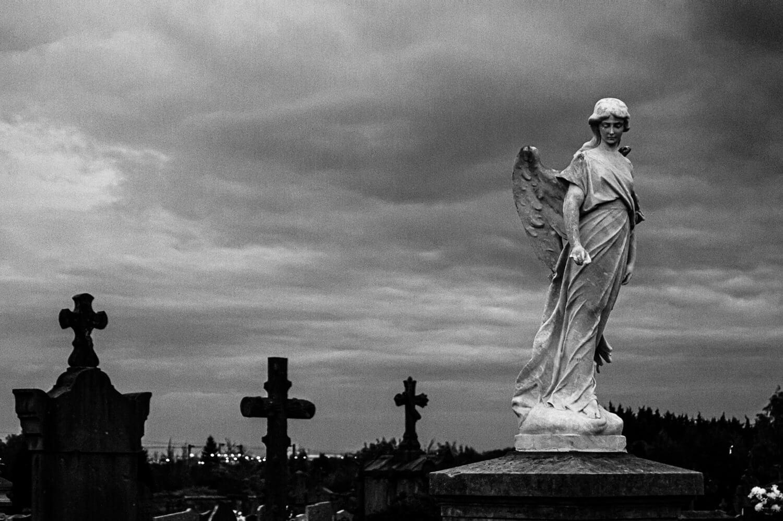 L'ange veille au cimetière d'Arras