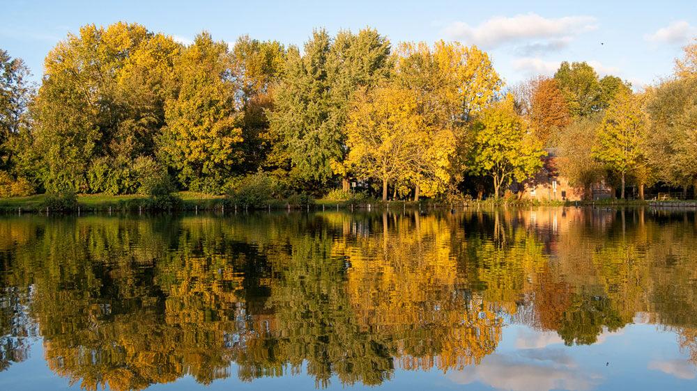 les couleurs d'automne et leur reflet